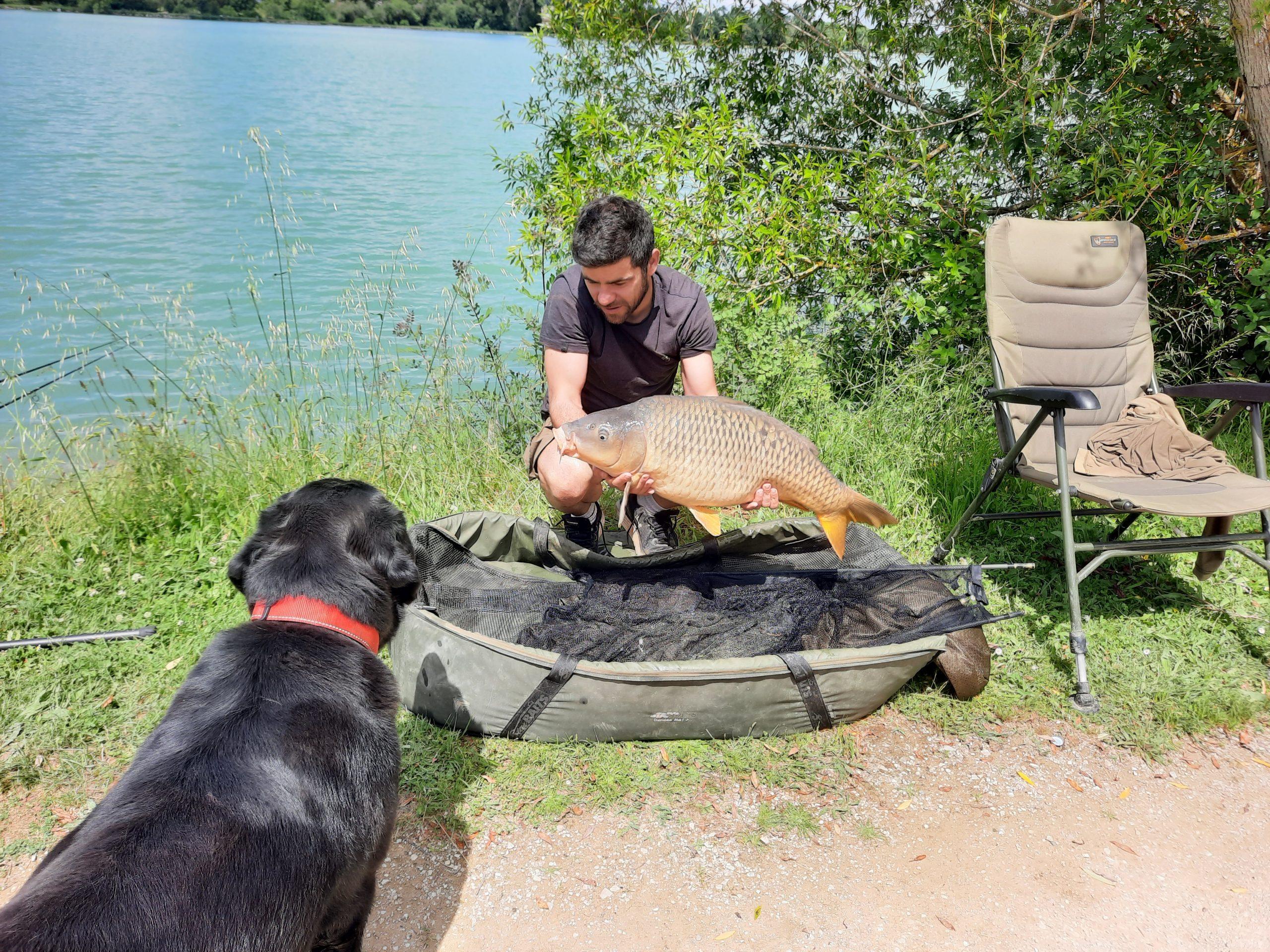 Pêche à la carpe au lac de Beaumont de Lomagne.