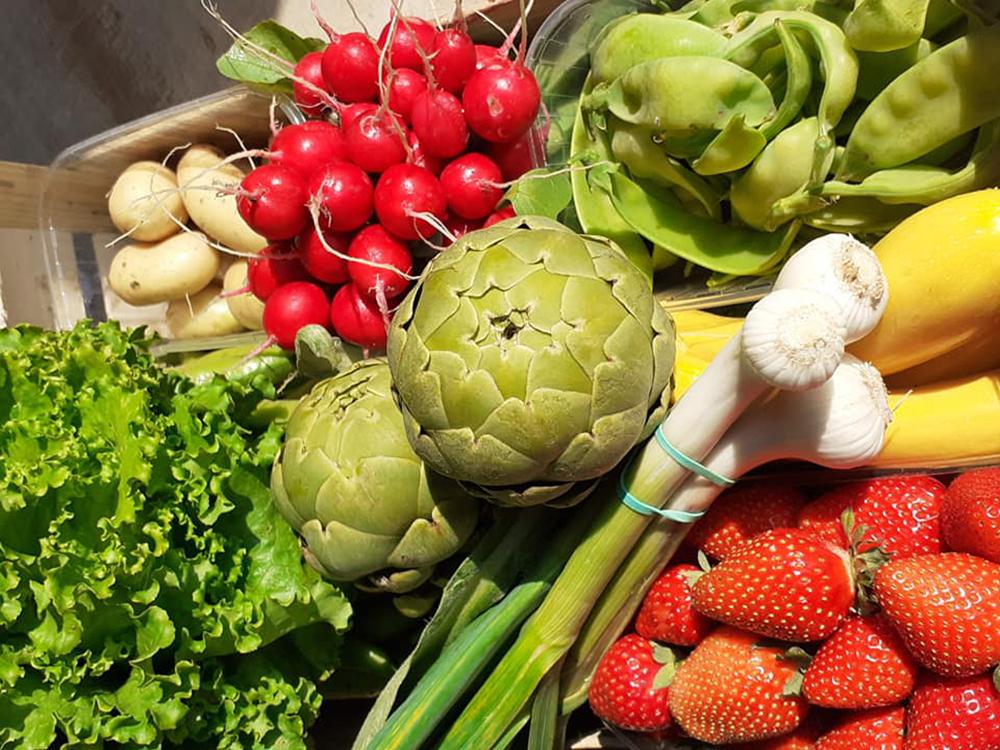 Fruits et légumes de Lomagne.