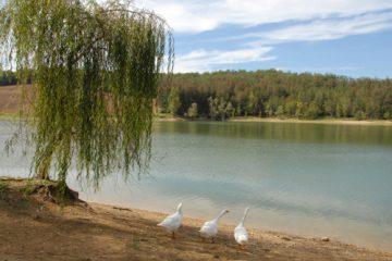 Circuit des lacs à Montgaillard